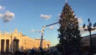 У Ватикані туристи захоплюються різдвяною ялинкою з Польщі (ВІДЕО)