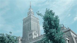 Польша глазами бразильцев: популярное видео собирает сотни тысяч просмотров