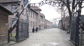 """""""Polskie obozy"""" to w większości celowe działanie"""