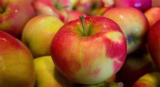 В этом сезоне цены на яблоки и груши выше на 44%, чем год назад