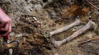Ukrainian dig reveals 950 Soviet victims in