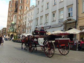 Мэра Кракава абвінавачваюць у зьдзекваньні над коньмі