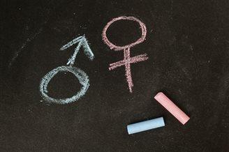 Греко-католическая церковь Украины критикует теорию о гендерной идентичности