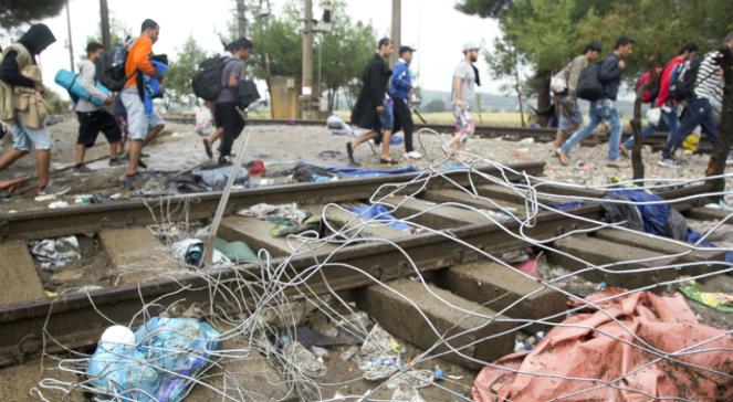 Uchodźcy na granicy serbsko-węgierskiej