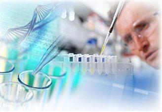 Polish researchers in leukemia breakthrough