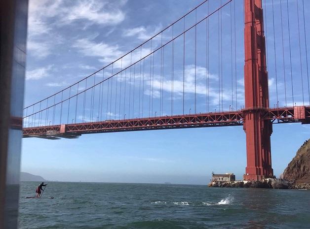 Рафал Зьобро плывет вдоль моста «Золотые ворота» в США