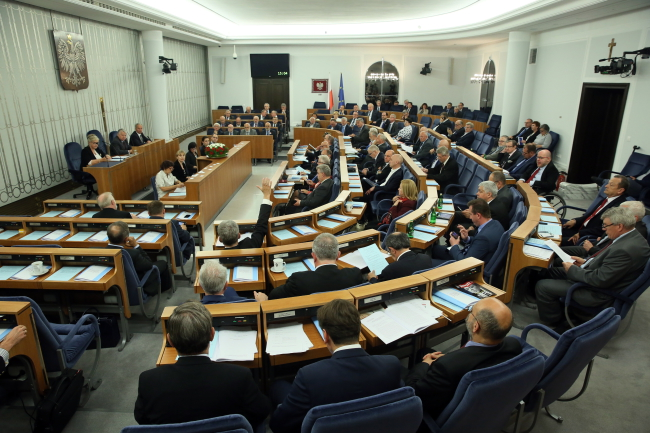 The Senate debates the possible referendum on 20.05.2015 Photo: PAP/Tomasz Gzell