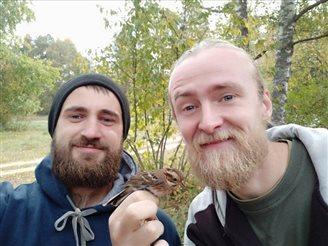 Удалося адлавіць новы для Беларусі від птушкі – стрынатку-рэмез