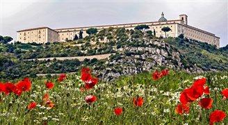 Obchody 74. rocznicy bitwy o Monte Cassino