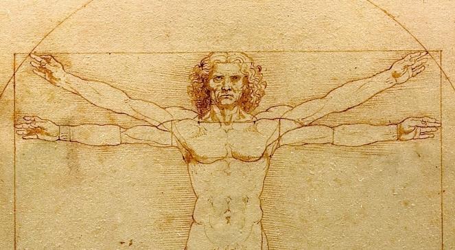 Леонардо да Вінчі, «Вітрувіанська людина» (фрагмент)