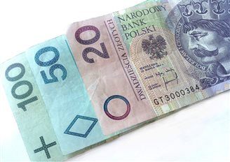 Złoty dips on election results