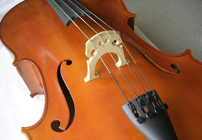 Cello. Photo: Wikimedia Commons (CC BY-SA 3.0)
