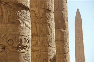 У старажытным Эгіпце знайшлі рэдкую жывёлу