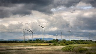 Poland's wind energy development deemed a success