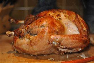 POLSKI FUSION :: Cold turkey