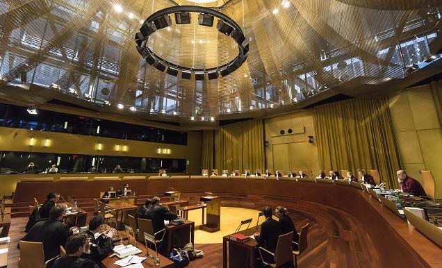 Большая палата суда Европейского союза