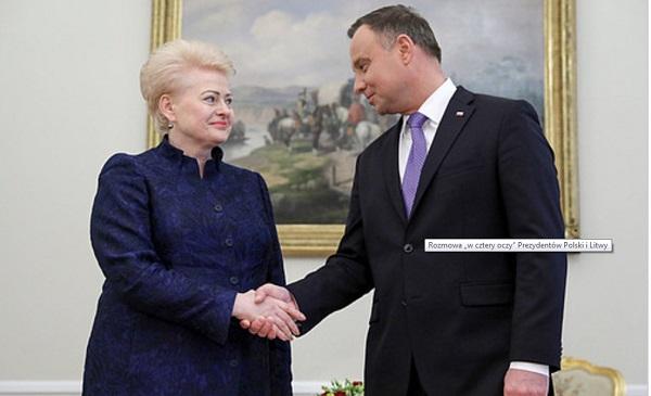Президенты Польши и Литвы во время встречи в Варшаве.