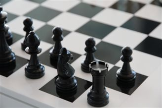 Chess success for Poles