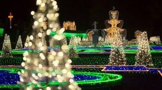 В Вилянуве открывается Королевский сад света