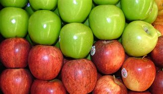 Record-breaking apple exports to Ukraine
