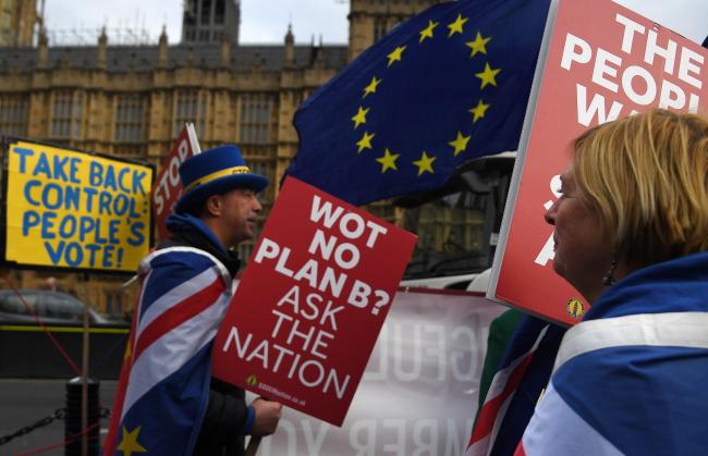 21 января 2019 г. Демонстрация сторонников ЕС в Лондоне