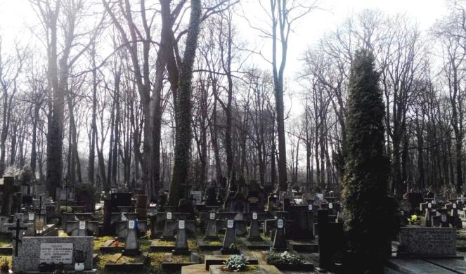 Могили воїнів УНР, Варшава, Воля, Православний цвинтар