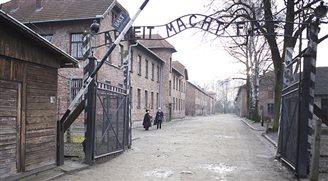 Музей Аушвиц-Биркенау готовится к большому наплыву посетителей на время ВДМ