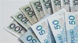 Польщі не пора вводити євро