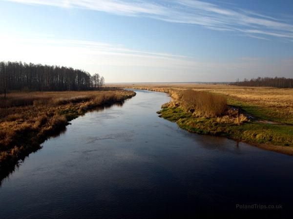 Die Landschaft des Biebrza-Tals ist eine natürliche Landschaft, mit einer großen Vielfalt an Pflanzen und Tieren.
