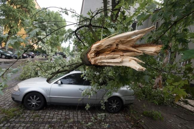 Storm damage in Łódź, central Poland. Photo: PAP/Grzegorz Michałowski
