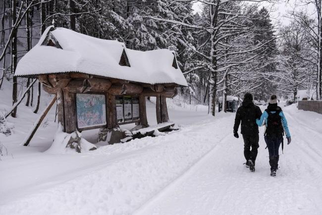 Winter in the Kościelisko Valley in Poland's southern Tatra mountains. Photo: PAP/Jan Niedziałek