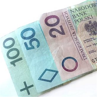 Central bank boss adds voice to anti-złoty conversion lobby