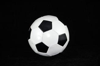 Football: Poland remain No. 6 in FIFA ranking