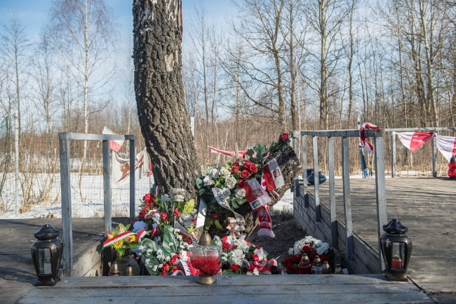 The site of the crash of the Polish presidential Tu-154 plane near Smolensk, western Russia, where President Lech Kaczyński, his wife Maria and 94 others were killed on April 10, 2010. Photo: PAP/Wojciech Pacewicz