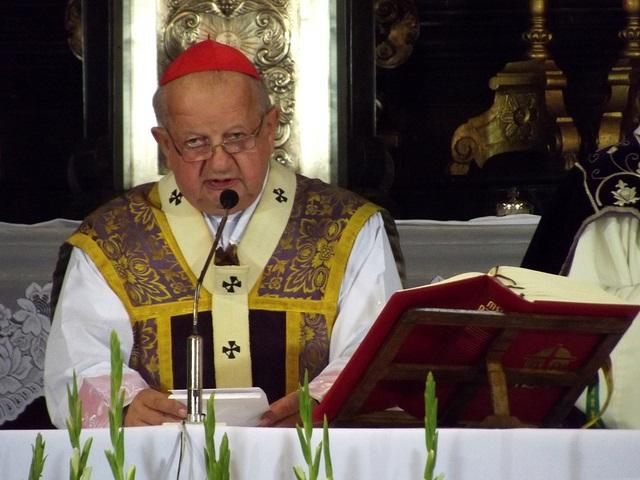 Cardinal Stanisław Dziwisz. Photo: Flickr.com/Piotr Drabik