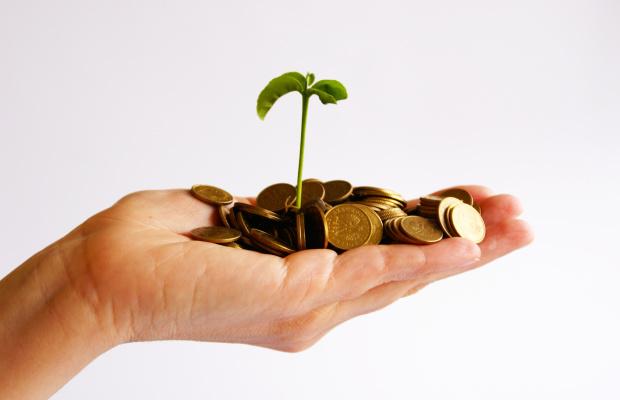 Вирощування стартапа - це шанс на успіх