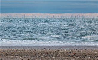 Polish energy giant seeking wind farm partner: report
