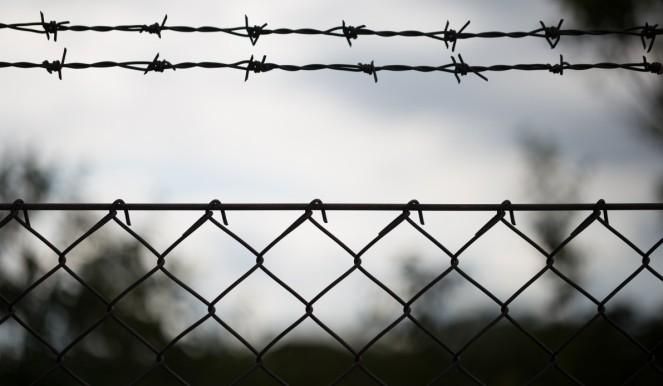 Латвія побудувала на кордоні з Росією 93-кілометровий паркан з колючим дротом