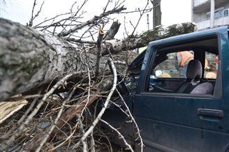 Wind, rain wreaks havok in Poland