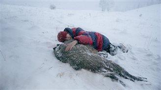 На экраны польских кинотеатров выходит фильм «След зверя» Агнешки Холланд