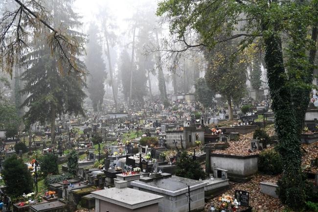 Головний цвинтар в Перемишлі