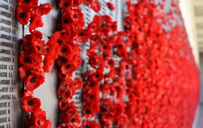 Красный мак - символ памяти жертв Первой мировой войны, а впоследствии - жертв всех военных и гражданских вооруженных конфликтов, начиная с 1914 года.