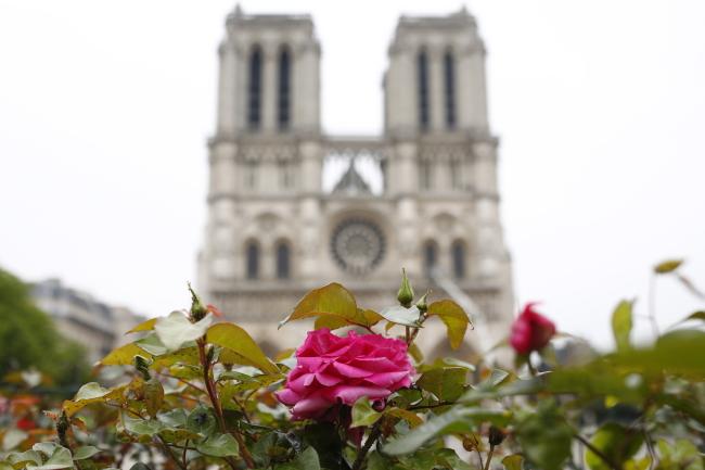 Україна пропонує допомогу у відновленні собору Паризької Богоматері
