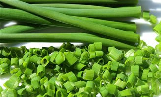 POLSKI FUSION :: Are young vegetables healthy?
